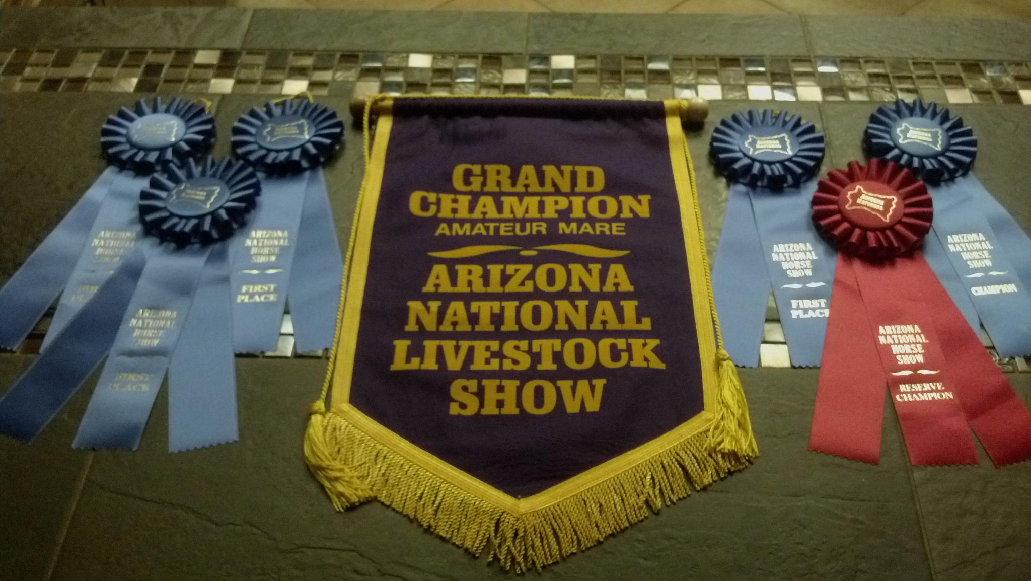 http://painteddesertranch.com/wp-content/uploads/2018/11/FirstOpenGrandChampion.jpg